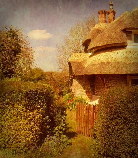 The-cottage-garden