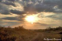 Trail to Days End von Dan Richards
