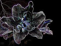 Gaze Upon A neon Star von jfantasma-artistry
