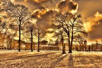 Sonnenuntergang Schlossgarten in Berlin von MaBu Photography