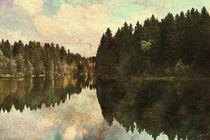 Kuttelbacher Teich, Harz - VERSION B von ndsh