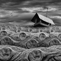 Stormy by Dariusz Klimczak