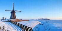 Winter Windmills von Sara Winter