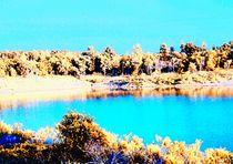 Lake1d
