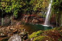 Madeira-3018-davidpinzer-1402