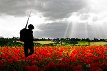 Lost Soldier von James Biggadike