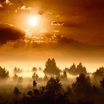Untitled-panorama1f-cr