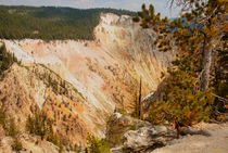 Grand Canyon Of The Yellowstone by John Bailey