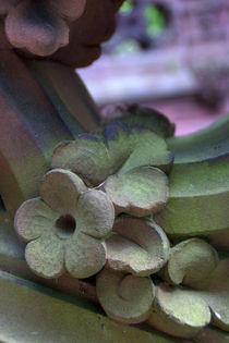 Stone Flowers von uta-behnfeld