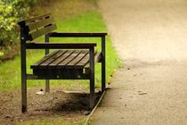 Bench in the park by Luisa Azzolini