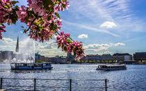 Alsterschippern auf der Binnenalster Hamburg von Dennis Stracke