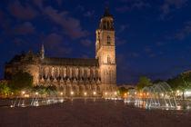 Magdeburger Domplatz von Michael Zieschang