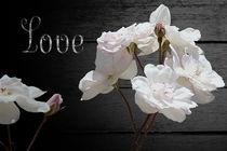 Forever Bouquet von Carol Vega