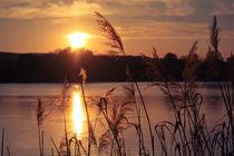 Sonnenuntergang am See von sylbe