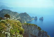 Capri #2 von Leopold Brix