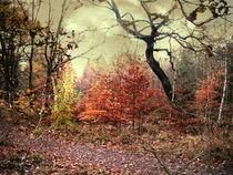 Herbstsonate in Moll von Heidrun Carola Herrmann