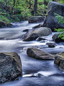 Oker und das Wasser by shphoto