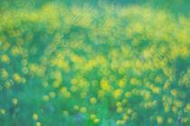 colors of spring von rgb cmyk