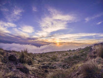 Kilimanjaro Sunset by Jim DeLillo