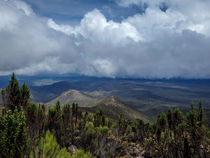 Kilimanjaro Vista von Jim DeLillo