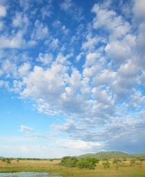 Wolkenfächer von reisemonster