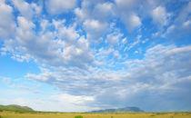 Fächerwolken von reisemonster