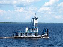 Schleppschiff auf dem Amazonas von reisemonster
