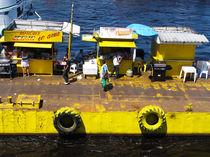 am Hafen von Manaus von reisemonster