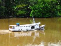 ein weißes Boot auf dem Amazonas von reisemonster