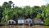 Häuserreihe am Amazonas von reisemonster
