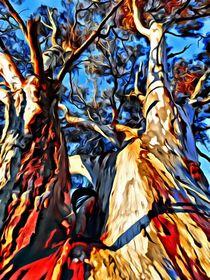 Land-tree