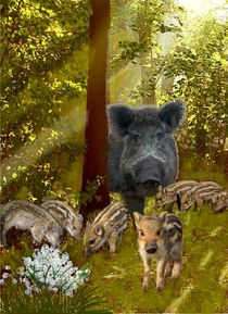Waldtiere von Heidi Schmitt-Lermann