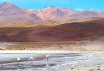 Bolivien020