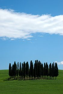 Toscana - ITALY by Nathalie Matteucci