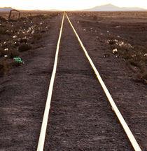Gleis in die Sonne von reisemonster