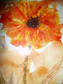 Die Sonnenanbeterin von Heide Pfannenschwarz
