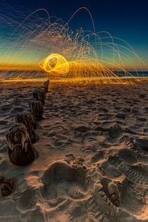 Spider at Baltic Sea by markusBUSCH FOTOGRAFIE