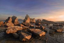 Hashigui Rocks in Kushimoto, Wakayama, Honshu von Luciano Lepre
