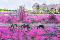 Pferde auf Pink von Viktor Peschel