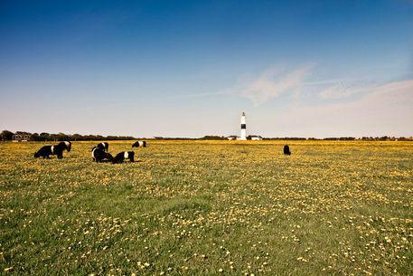 Kampen-leuchtturm