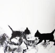 Nachbars Katzen unterwegs von Heike Jäschke