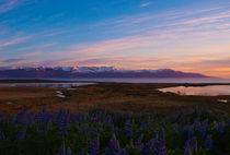 Midnight Sun - Husavik - Iceland by Jörg Sobottka