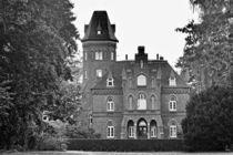 Marienburg Monheim 001 von leddermann