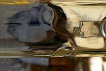 Die Fasche in der Flasche 3 von Hella Schümann