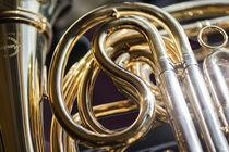 Das Horn von Christiane Calmbacher