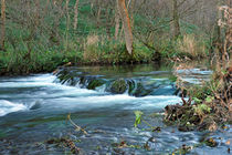 Woodland Weir, Dovedale von Rod Johnson