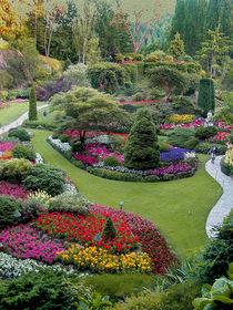 Butchart Gardens by John Bailey