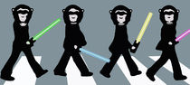 Beatles Star Wars by Marisa Rosato
