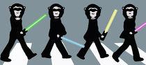 Beatles Star Wars von Marisa Rosato