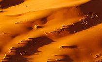 Namib dunes at sossusvlei by Andy-Kim Möller